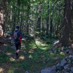 Hiking section to Crni Vrh on Grmeč mountain