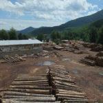 The sawmill in Krasno village