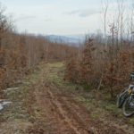 The muddy section to Vodenica hill