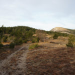 The section from Brest to Trstenik