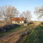 The section near Konjevrate