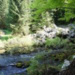 The spring of Lička Jesenica subterranean stream
