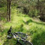 This singletrack leads to the spring of Lička Jesenica stream