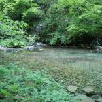 The spring of Plitvica stream in National Park Plitvice