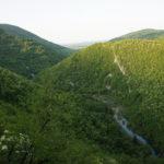 The canyon of Korana river