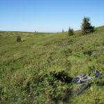 The section of the trail near Vražja Glava on Stara Planina mountain