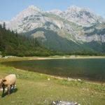 Maglić and Trnovačko Jezero lake