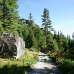 The carriageway in National Park Rila