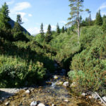 The stream leads along the trail in National Park Rila